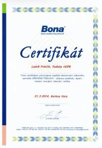 2132014_ludvik